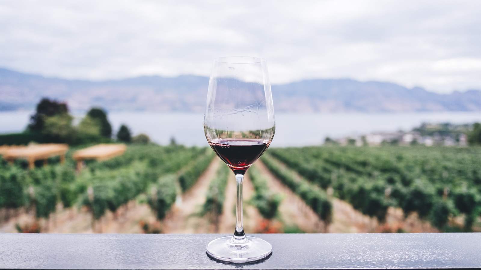 wine-gird