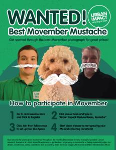 movember2014_ui_web